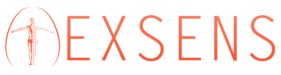 logo exsens avatar 3D